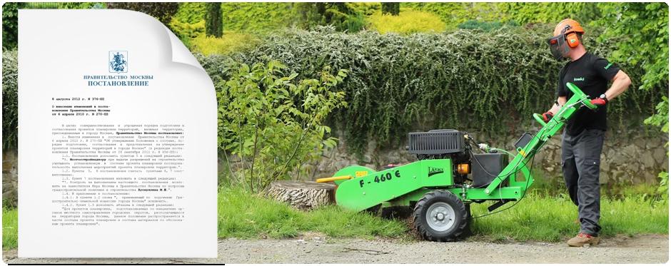 Согласно Постановлению Правительства N 376-ПП - пни, как и прочая древесная масса должны быть утилизированы или переработаны в соответствующем порядке