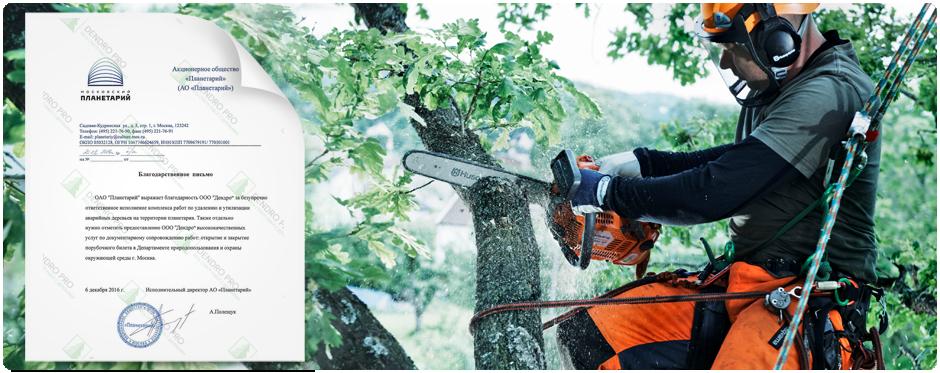 У нас большой опыт удалению и вырубке деревьев