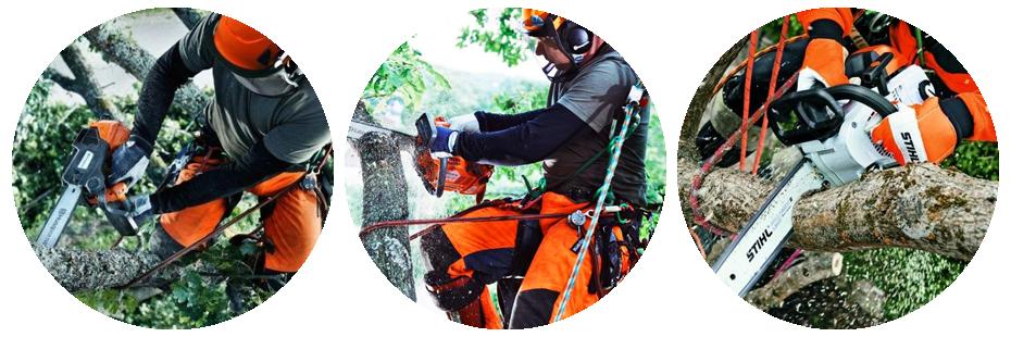 Проведение обрезки деревьев