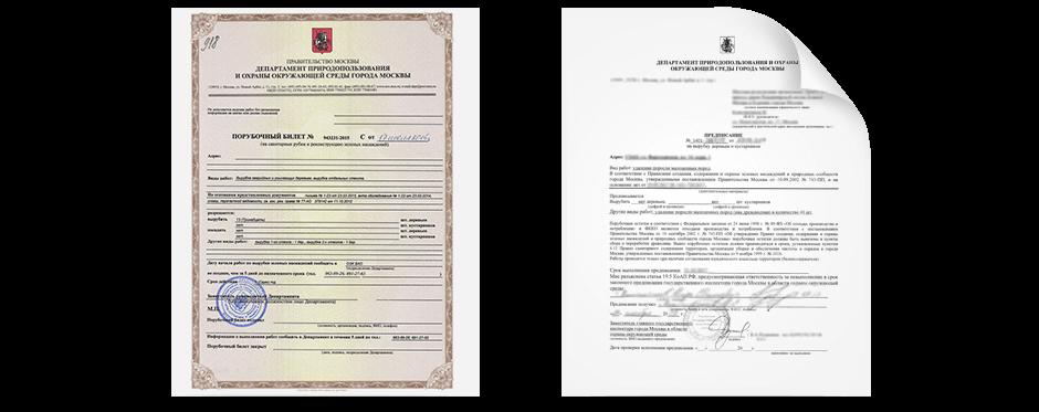 Только эти разрешительные документы предоставляют законное право на удаление насаждений