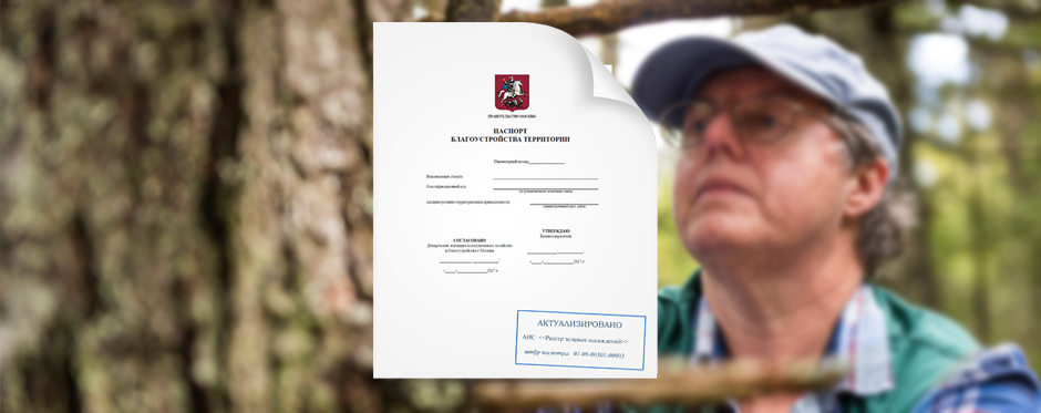 паспорт и обследование дерева