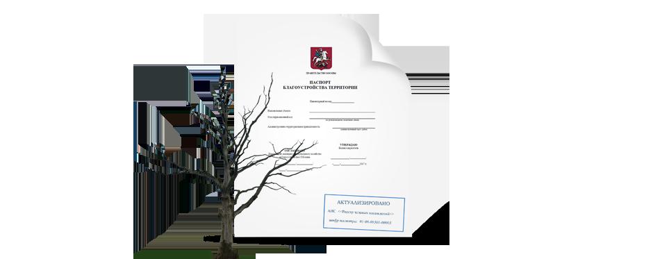 паспорт благоуйстройства и сухие деревья