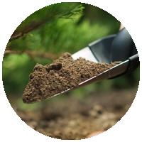Улучшение почв зелёных насаждений